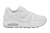 HERREN SCHUHE NIKE AIR MAX COMMAND 629993 112